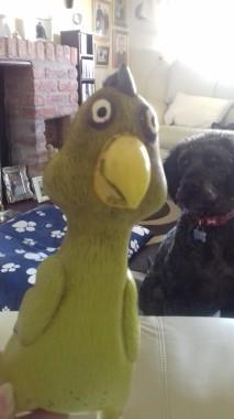Ralph and Doug